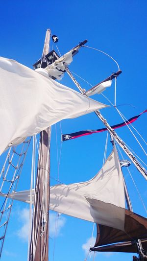 Temporary pirate Pirate Mast Nautical Vessel Sailboat Low Angle View Sailing Ship Day Mode Of Transport Rope Sky Transportation Sunlight Sailing Outdoors Blue Tall Ship Ship Clear Sky Colour Your Horizn EyeEmNewHere