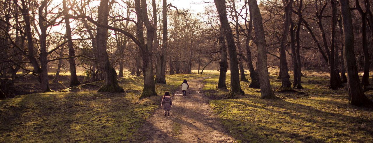 Kids walking in the Abbeystead forest near Lancaster, Lancashire Hidden Gems  Lancashire Lancaster Travel Abbeystead Kid Landscapes Travel Destinations
