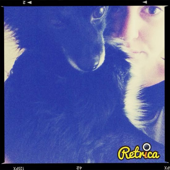 Selfieswithmydog Dog Black