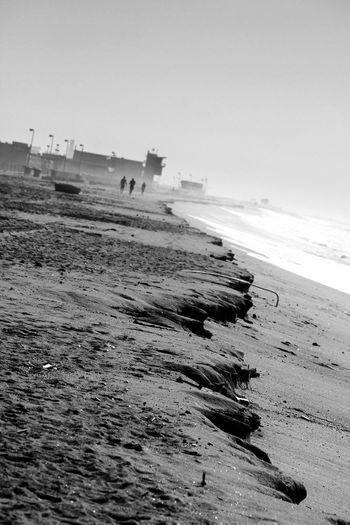 Long Beach California beaches Blackandwhite Photography Beaches Of The World California Love California Dreaming Market Reviewers' Top Picks