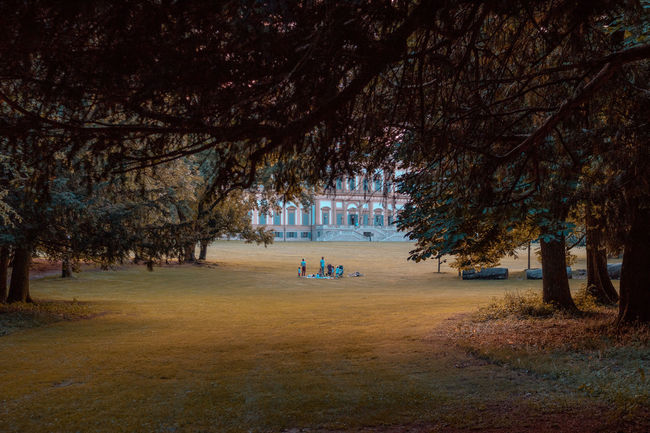 Family Monza Picnic Serenity Autumn Grass Nature Outdoors Park Plant Tranquility Tree Villa Reale