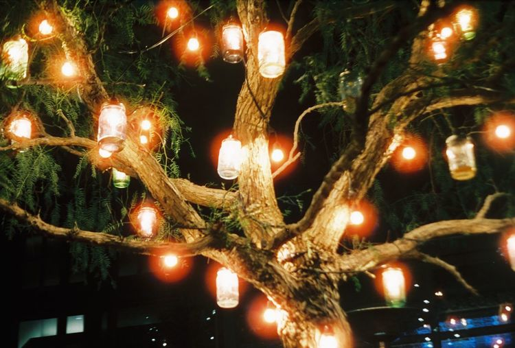 CineStill 800T Illuminated Lighting Equipment Mason Jar Masonjarlight Tree Tree Lights Decoration Night Hanging Low Angle View Electric Light No People Electricity  Light Bulb Glowing Film Film Photography Filmisnotdead Street Photography Canon AE-1 Celebration Adapted To The City