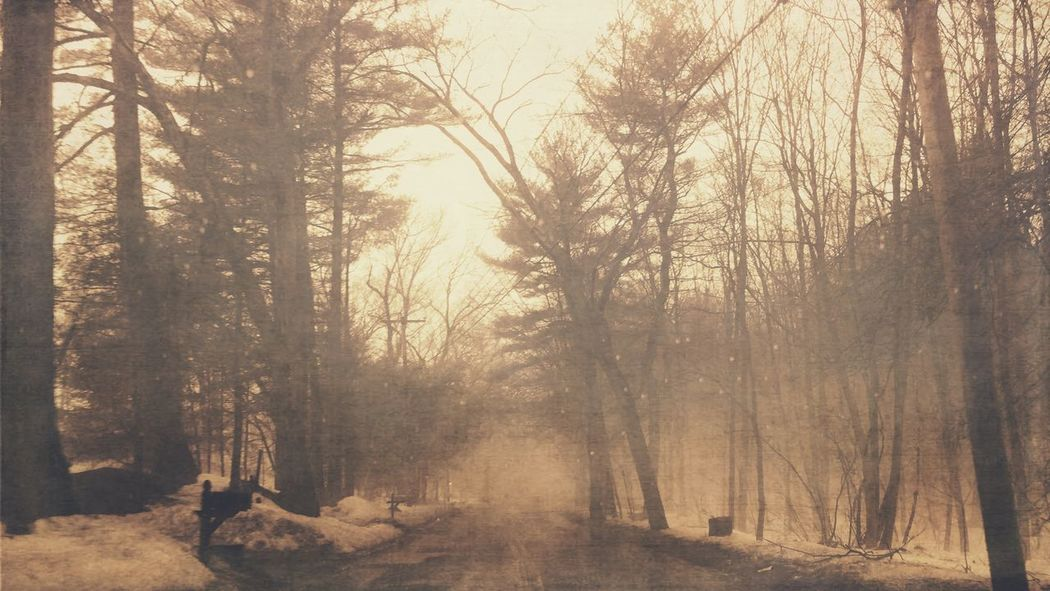 Foggy Road Sepia Filters App Snapseed Spring Landscape IPhoneography Iphone 6 This Week On Eyeem