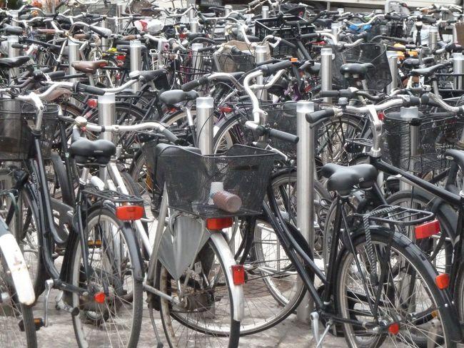 """Bike Park Sea"" Bicycles Bike Park Bike Parking Bikes City City Copenhagen, Denmark Europe Health No People Parked Sea Of Green Transportation"
