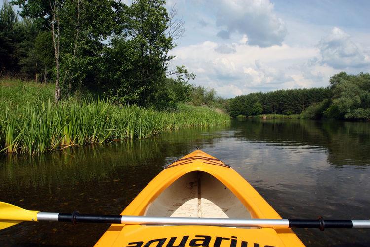 Kayak Kayaking Nature Nautical Vessel Oar Pilica Pilipinas Poland Polen River Vacations Water