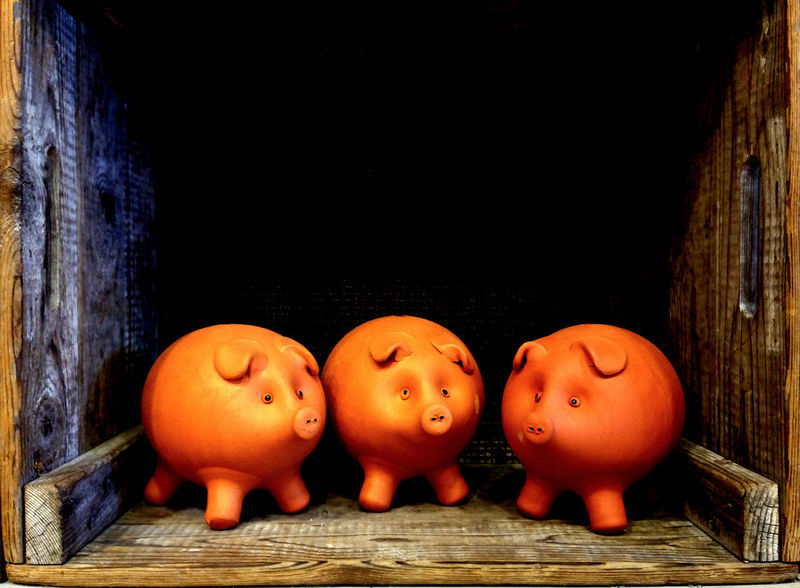 The three little pigs. A group of piggybanks in a little wooden box, so very cute. Bank Brown Close-up Coins Creative Saving Creativity Dollars Finance Medium Group Of Objects Money Orange Color Piggy Banks Pigs Save Money Surface Level Three Little Pigs Wooden Boat Wooden Crate