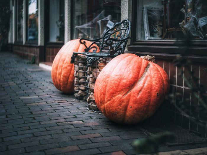 View of pumpkins on brick wall