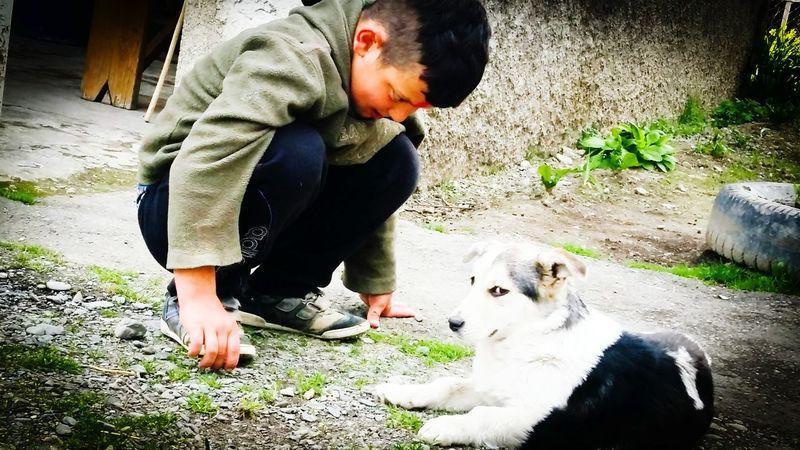 Love Dog Friendship Pets Domestic Animals Georgia. Childhood Boys One Animal BFF ❤