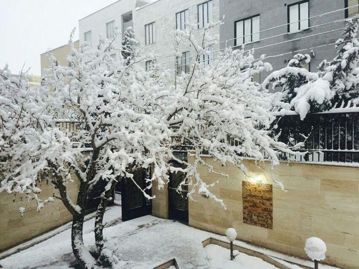 زمستونه...هوا سرده دمش گرم ❄👌استاد بشین تا بیایم کلاس Iranian Iran♥ Tehran, Iran Hello World Snow ❄ Snow Day Cold Days Cold Winter ❄⛄ Relaxing Hi! Everyday Iran Sahar