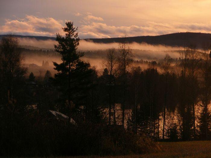 Fog Autumn Mountain Water