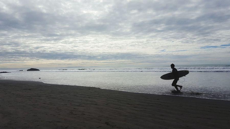 surfin' NZ