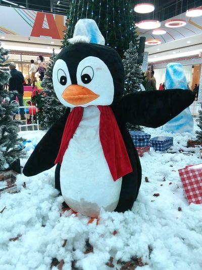 Winter Snow Snowman Holiday - Event Outdoors No People Cold Temperature Day Cristmas Navidad Pinguin Pingüino Decoration Decorative Decorations Decoración Cristmas