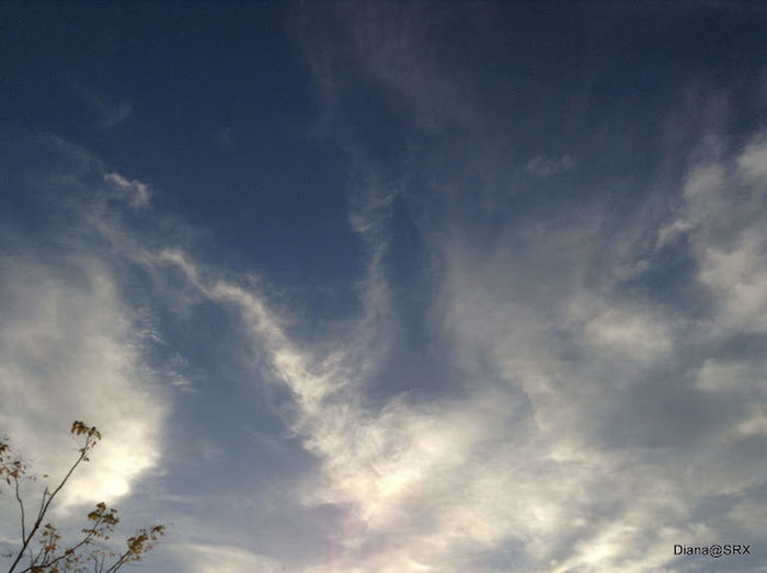 Do U See What I See ? Clouds The Purist (no Edit, No Filter) Clouds And Sky