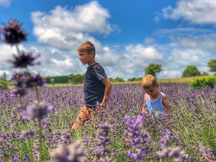 Brothers amidst purple flowers on field against sky