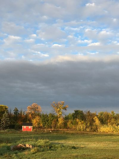 Autumn shed Sky