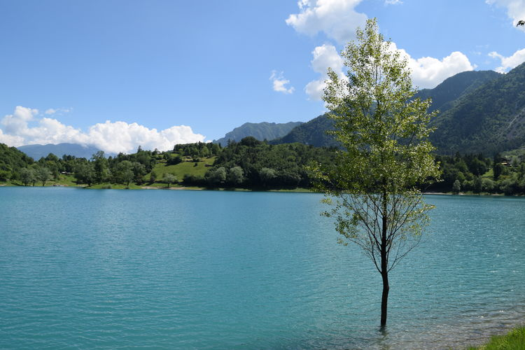 Beauty In Nature Blue Calm Cloud Cloud - Sky Day Growth Idyllic Lago Di Tenno Lake Landscape Mountain Mountain Range Nature No People Non Urban Scene Outdoors Remote Rippled Sky Tranquil Scene Tranquility Tree Trentino  Water
