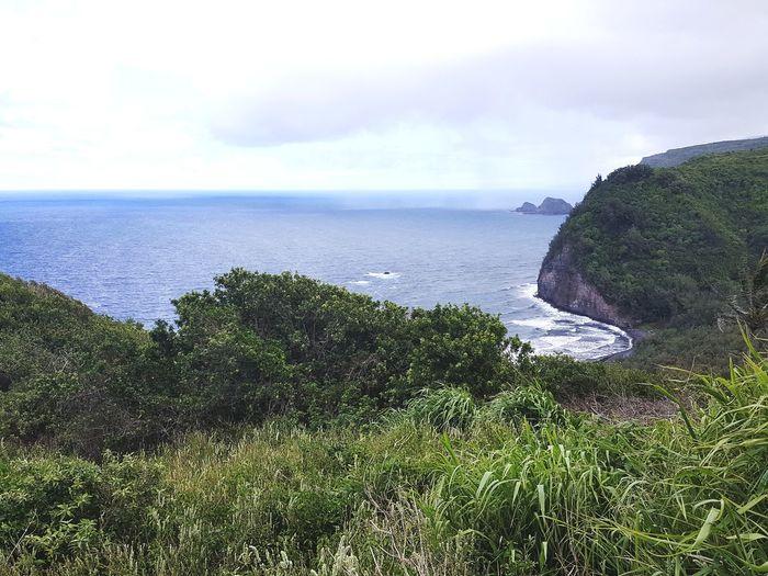 Pololu on the Kohala coast. Big Island, Hawai'i Water Sea Beach Sky Horizon Over Water Grass Wave Seascape Coast Coastline Tide Shore Ocean Calm Coastal Feature Seashore
