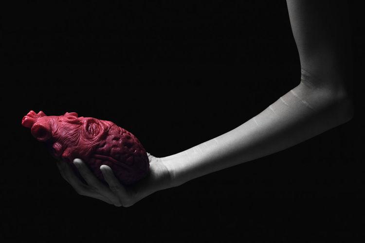 Close-up of hand holding rose over black background