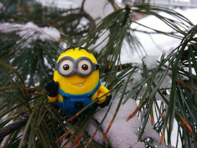 Dave's Adventures Minions Fir-tree Hello World
