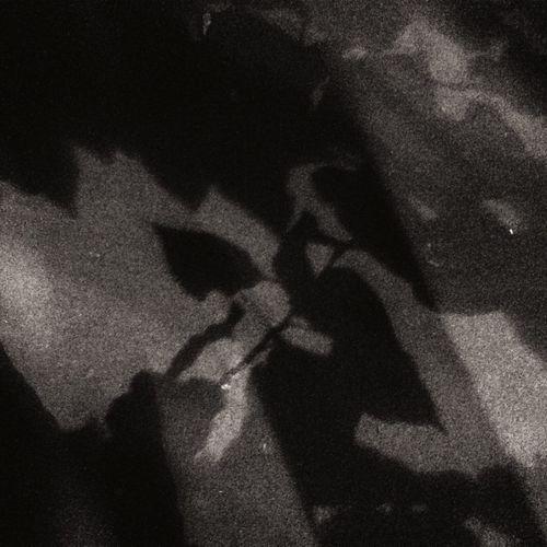 DmitryBarykin Shadow Asphalt Night