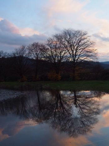 Slash water reflection in Ortenberg Germany Reflection Tree Sky