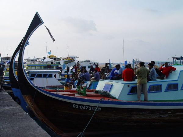 Cloud Cloud - Sky Day Fish Market Fish Ship Fisherman Nautical Vessel Ship Sky Tourism Transportation Vacations Water