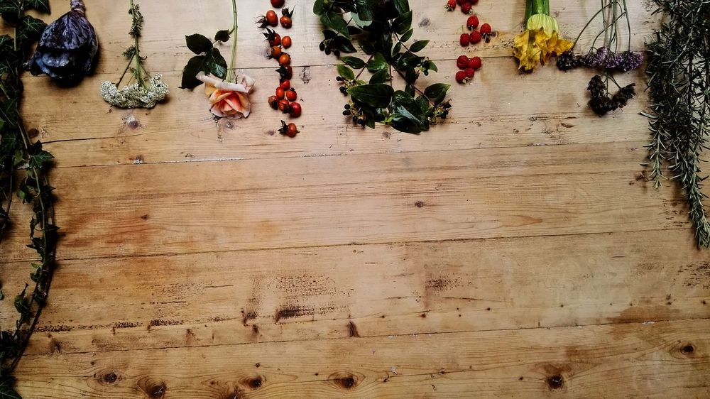 Urban Food London Urban Forest London Lifestyle Petal Forrage Tree Strawberry Flower Head Beauty In Nature Fragility Close-up Fruit Freshness Indoors  Table Flower Growth City Life Autumn Raspberries Superfood Primal Paleo Diet Natural Living Sustainability