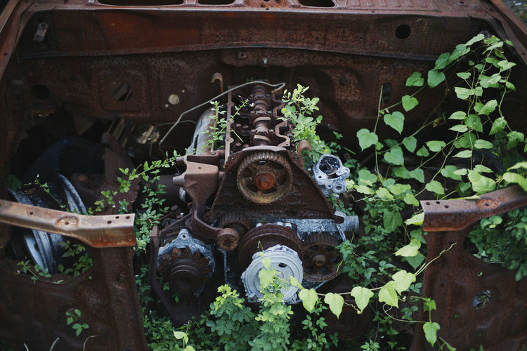 Machine Machinery Car Damaged And Wrecked No People Day Metal Rusty Plant Architecture Old Abandoned Representation Leaf Nature Run-down Outdoors Damaged Weathered Deterioration Ruined Peeling Off Old Ruin Leaves Leaf Vein Bad Condition Obsolete Destruction