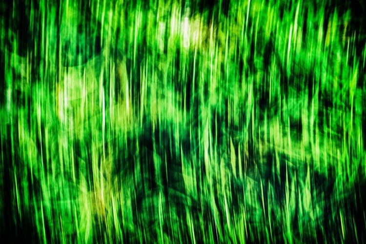 Grass Running Abstract Backgrounds Blurred Motion Green Color Long Exposure Motion Movement Pattern Running On Grass Speed Textured