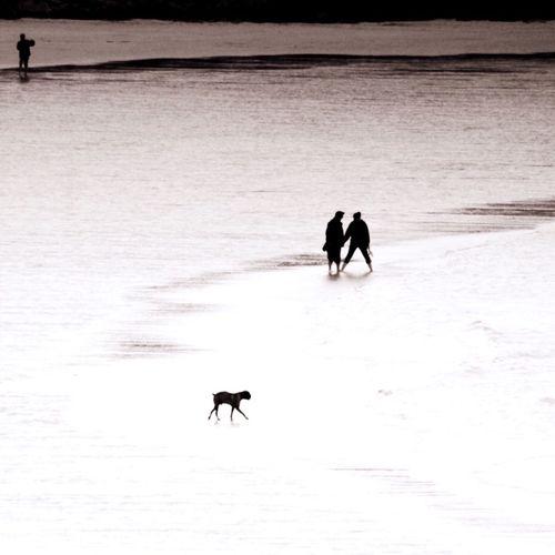 Beach Walk Sea