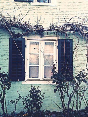 Open the window...
