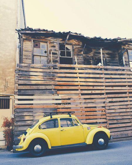 Vosvos Woswos Wolksvagen Car Turtle Yellow MyCar Carphotography Istanbul Kaplumbaga