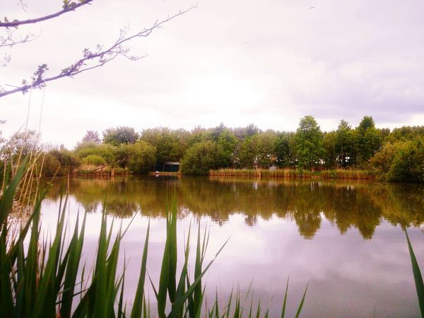Lake Lake View Outdoors Landscape_Collection Nature_collection