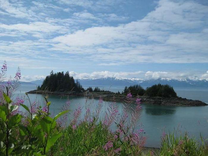 Little Island somewhere near Juneau, Alaska. Cloudporn Flowers, Nature And Beauty Waterscape Island View  Islands Flowerporn