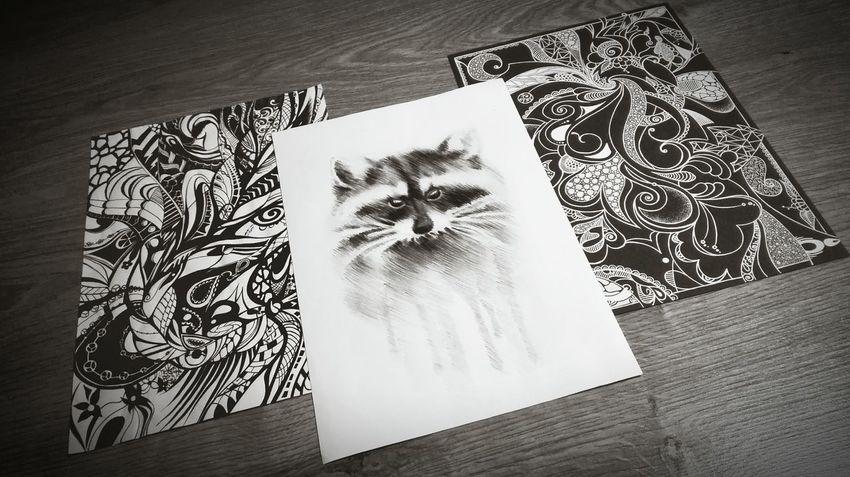 рисунок графика зентангл вензеля енот рисуем  Indoors  High Angle View Sketch Table Paper No People Close-up