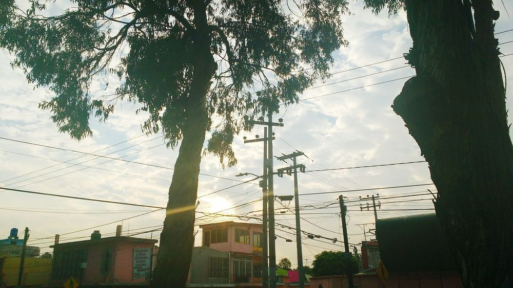 Tree Sky Sunset Cloud - Sky Sunlight Outdoors No People Low Angle View Architecture Built Structure Nature Day Coacalco Clouds Cloudy Power Line  Cable