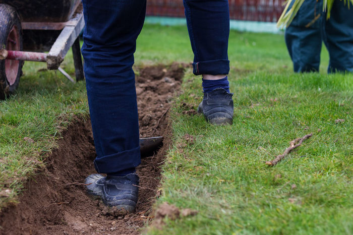 feet of worker standing on trench Construction Land Worker Dig Digging Dirty Field Garden Grass Ground Horticulture Human Leg Jeans Low Section Occupation Outdoors Shovel Soil Standing Trench Working