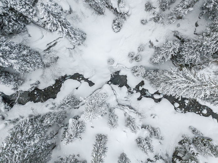 Winter Snow Cold Temperature Nature Day High Angle View Beauty In Nature Covering No People Land White Color Outdoors Tranquility Field Tree Scenics - Nature Full Frame Plant Frozen Powder Snow