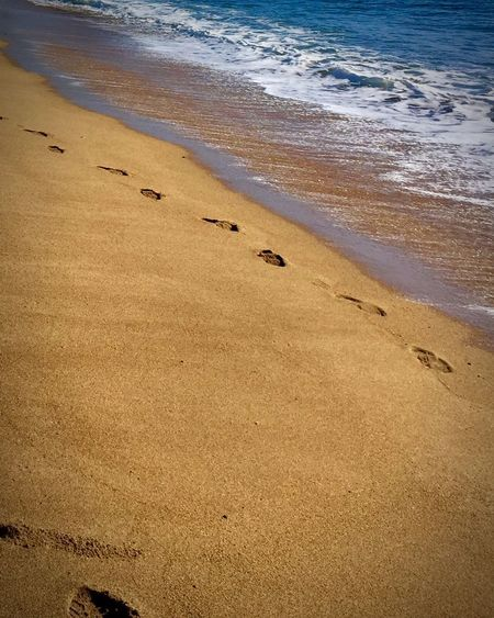 Footsteps Sea Beach Sand Beauty In Nature Water Nature Shore Tranquility Wave Outdoors No People Horizon Over Water Day Scenics Paw Print