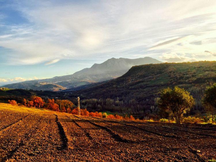 Showcase: January Bestphoto Taurasi Avellino Italia Italy Nature Nature_collection Eyem Best Shots Eyemphotography
