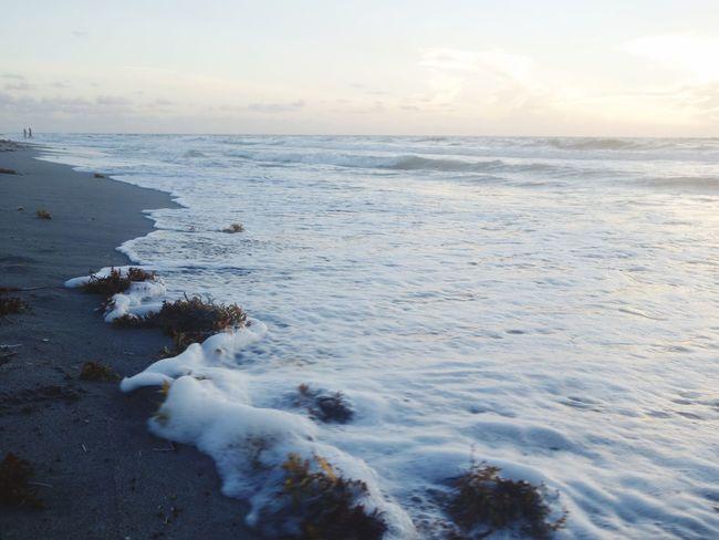 Bright Shore Tide Coming In Foam