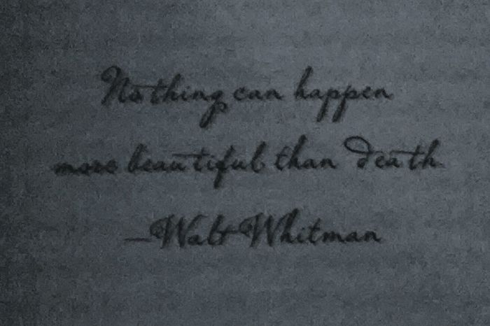 Walt Whitman Book The Coldest Girl Cold Town Quote