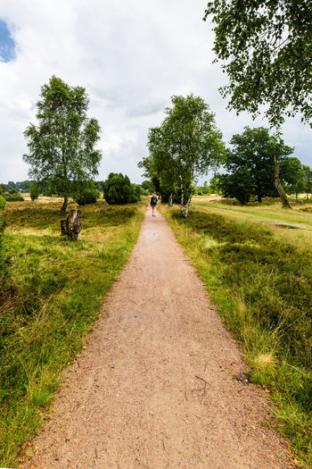 Endless Road / with my DSLR & @fotogerafie - (c) Nidal Sadeq Endless Following Lüneburger Heide Wanderer Wanderlust Woman Beauty In Nature Cloud - Sky Day Endlessness Field Grass Growth Landscape Nature No People Outdoors Reach Road Rural Scene Scenics Sky The Way Forward Tree