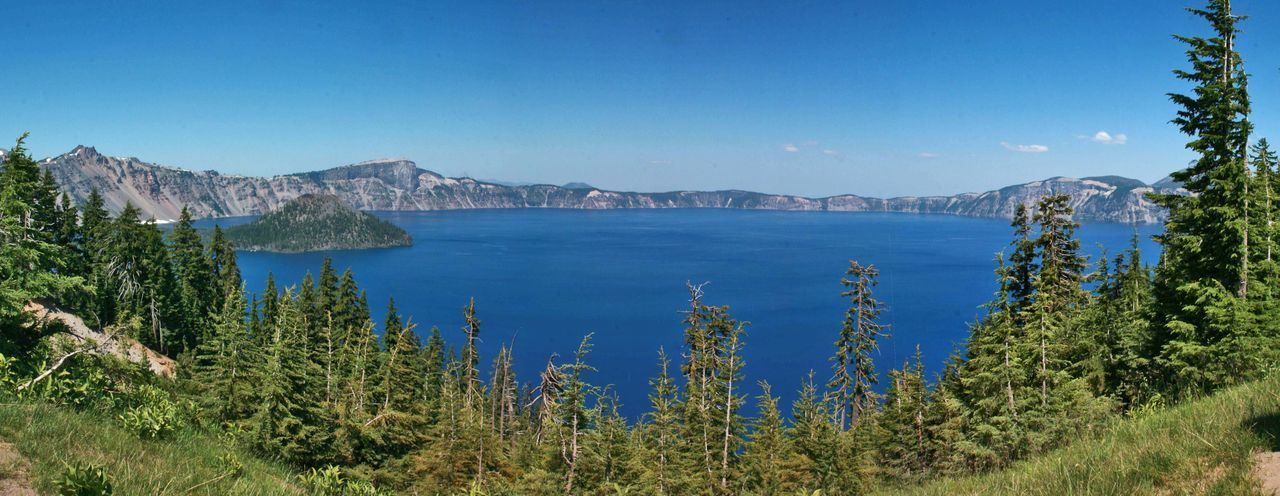 Crater Lake Mountain Scenics - Nature Water Tree Sky Plant Tranquil Scene Nature Tranquility Beauty In Nature Sea Blue Land No People Day Clear Sky Forest Travel Destinations Non-urban Scene Outdoors Pine Tree Bay Coniferous Tree Crater Lake National Park
