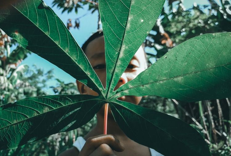 Close-up of boy covering face by plant leaf