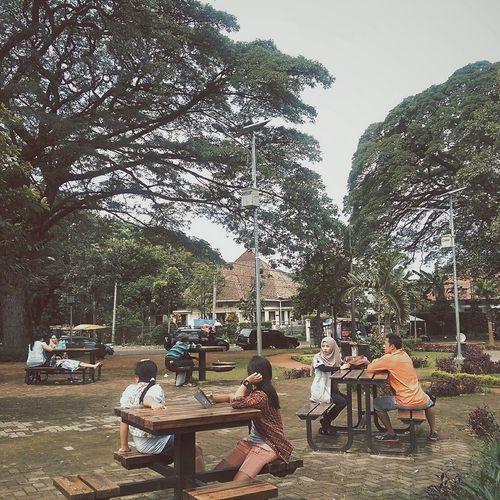 At The Park Streetphotography Bandung, West Java Cibeunyingpark Eye4photography