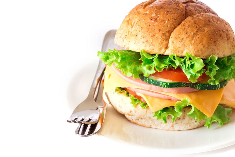 Close-up of burger in plate against white background