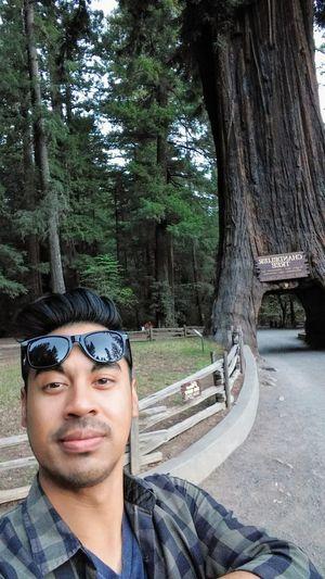 Sunglasses Tree Portrait Selfie Chandelier Tree Roadtripping Road Trip 2016 Road Trip California
