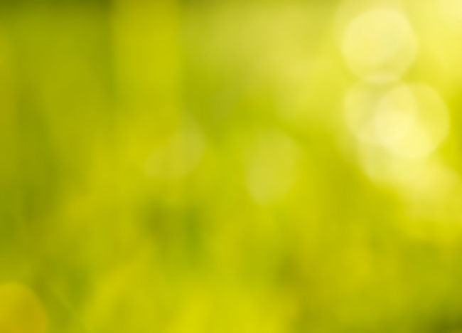 Abstract Abstract Backgrounds Backgrounds Beauty In Nature Blurred Motion Bokeo Bright Brightly Lit Defocused Full Frame Gold Colored Green Color Light - Natural Phenomenon Multi Colored Nature No People Outdoors Pattern Soft Focus Softness Springtime Sunlight Vibrant Color Yellow