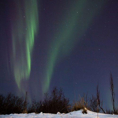 A late night walk in Reykjavik Aurora NorthernLights Auroraborealis Iceland Whatsonrvk